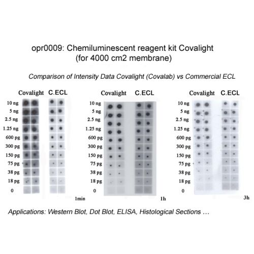 Covalight ECL reagent