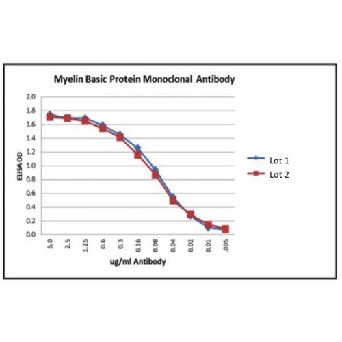 Myelin Basic Protein (MBP101) antibody