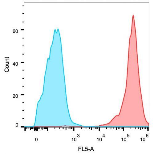 EGFR antibody (EGFR1)