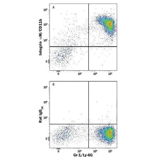 CD11b antibody (M1/70) [PE]