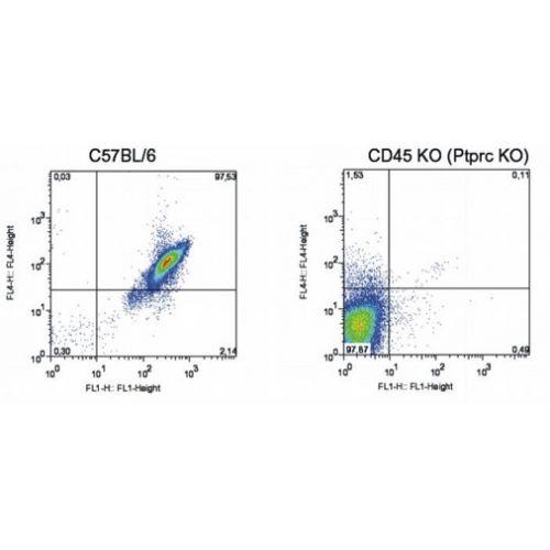 CD45 antibody (EM-05) [PE]