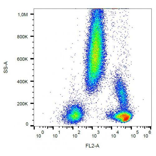 CD48 antibody (MEM-102) [PE]