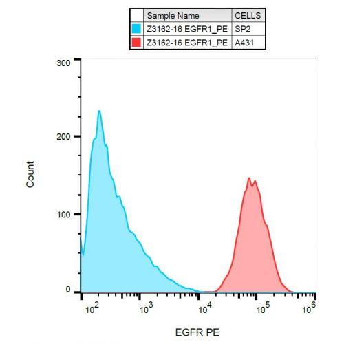 EGFR antibody (EGFR1) [PE]