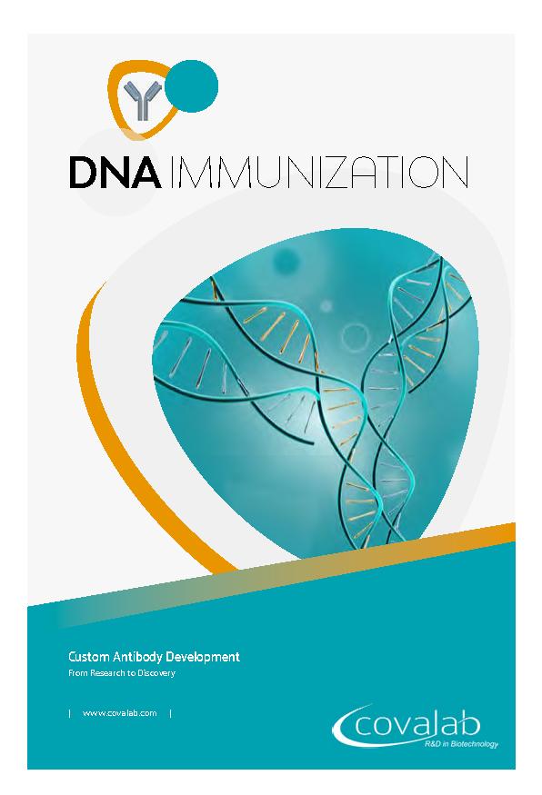 DNA immunization