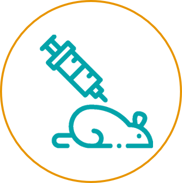 DNA Immunization_Immunization