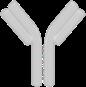 Specific antibodies
