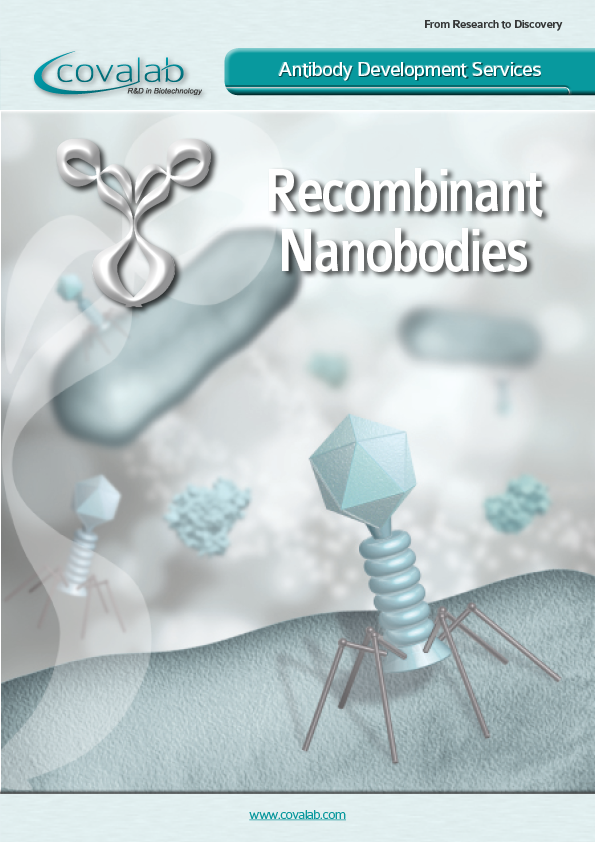 Custom nanobodies development